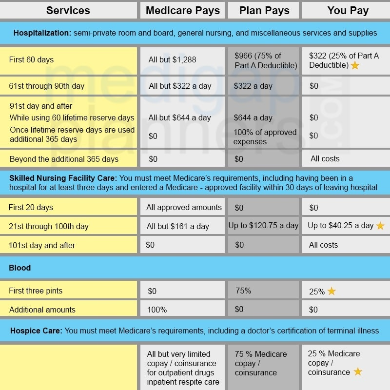 Plan L benefit chart part a